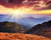 Постер, плакат: Горный пейзаж с красивое небо и облака на рассвете Горы Карпаты Украина