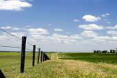 picture of barbed wire fence  - Fenced by the old rugged wood and barbed wire the Aussie farmland flourishes under the hot sun - JPG
