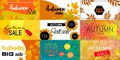 Autumn Sale Leaves. Halloween And Thanksgiving Fall Season Banner Concept Set. Flat Illustration Of  poster