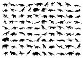 image of giant lizard  - Dinosaur silhouettes isolated on white - JPG