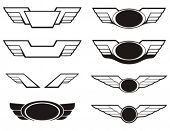 pic of spread wings  - Aviation insignia wing set - JPG