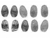 realistic fingerprints