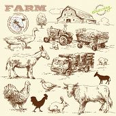 stock photo of truck farm  - farm collection - JPG