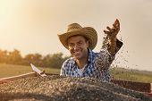Happy Farmer Sitting In Trailer Full Of Sunflower Seeds poster