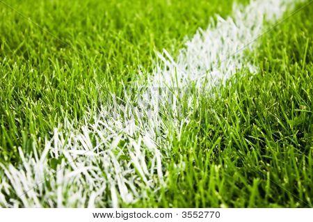 Soccer Of Football Stripes On Beautiful Green Grass