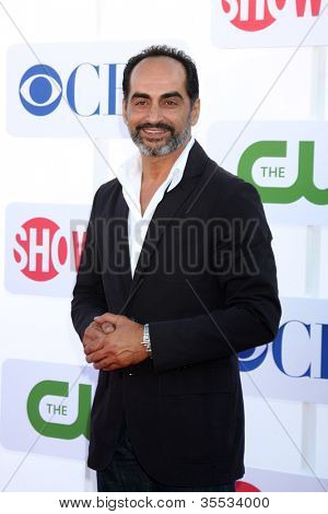 LOS ANGELES - JUL 29:  Navid Negahban arrives at the CBS, CW, and Showtime 2012 Summer TCA party at Beverly Hilton Hotel Adjacent Parking Lot on July 29, 2012 in Beverly Hills, CA