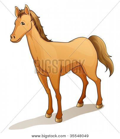 illustration of a horse on a white background