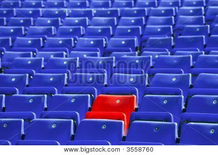 Blue Sit Rows