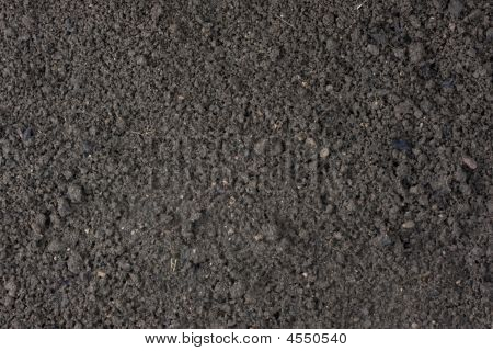 Garden Moist Top Soil Background