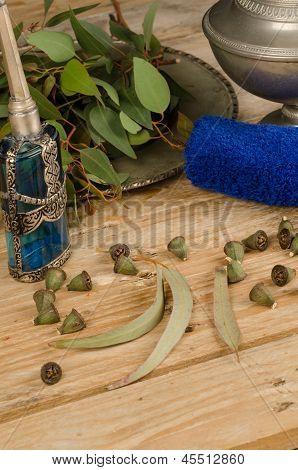 Eucalyptus As A Medicinal Herb