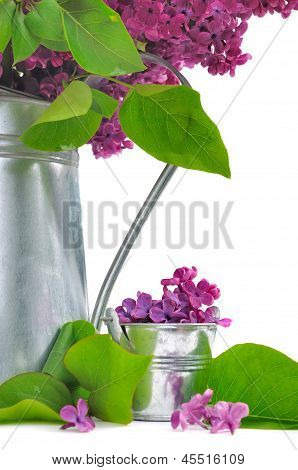 Decor With Lilac