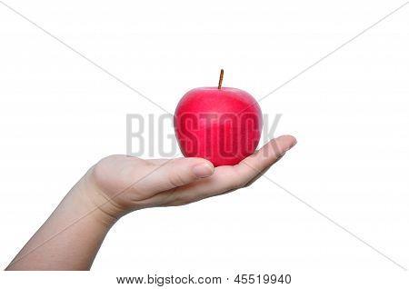 Manzana roja de explotación de mano