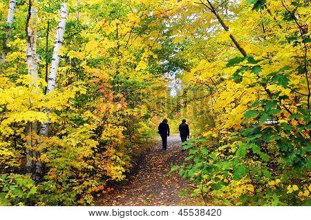 Hiking Hungarian Falls Trail