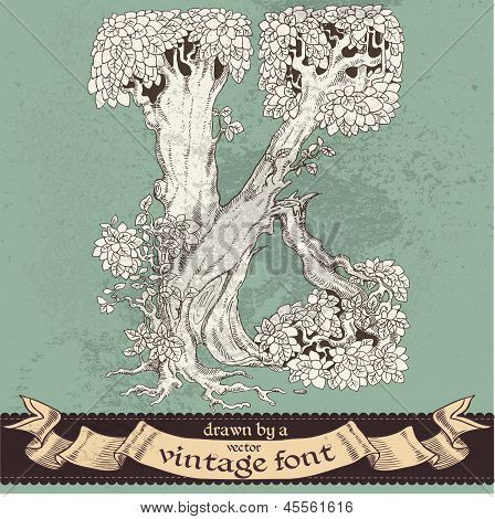 Magic grunge forest hand drawn by a vintage font - K