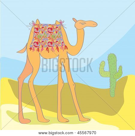 Camel with cactus in the desert