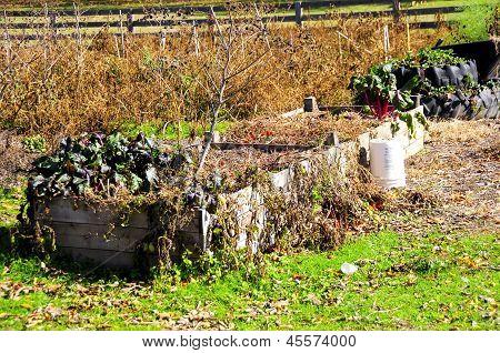 End Of The Garden