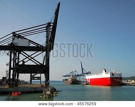 Shipping Terminal