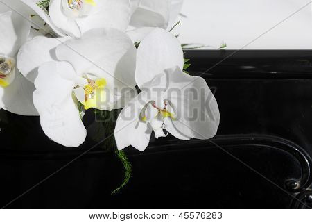Wedding Bouquet On Black Piano