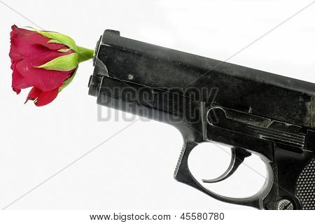 gun and rose on the white background
