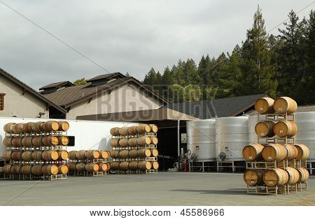 Oak barrels and stainless steel fermentation tanks at the vineyard