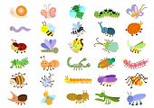 picture of caterpillar cartoon  - insect - JPG