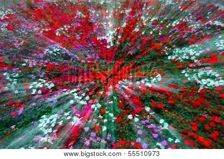 Explosion of a spring colors