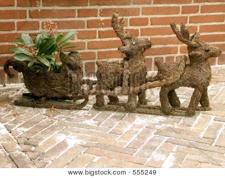 Deers In Garden