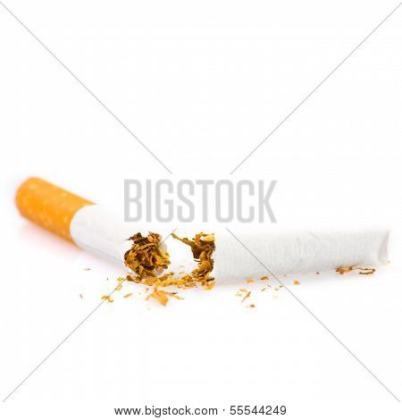 Broken Cigarette Isolated On White Background