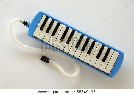 Blue and white Pianica.