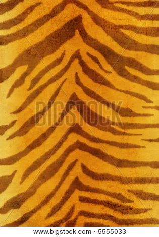 Grunge Background - Fur Of A Tiger