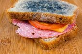 stock photo of salami  - moldy sandwich with salami tomatoes on a chopping board - JPG