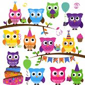 stock photo of birthday hat  - Vector Collection of Party or Celebration Themed Owls - JPG