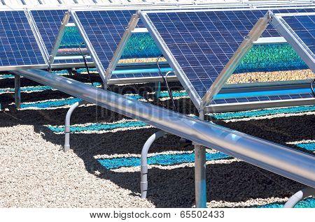 Ground Level Solar Panels Closeup
