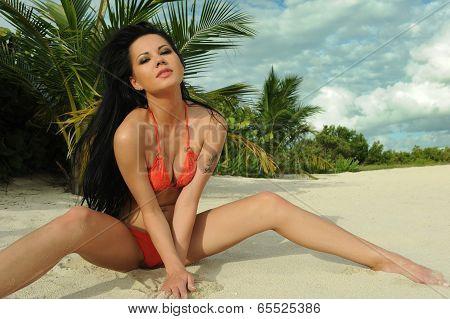 Young brunette in red bikini posing sexy