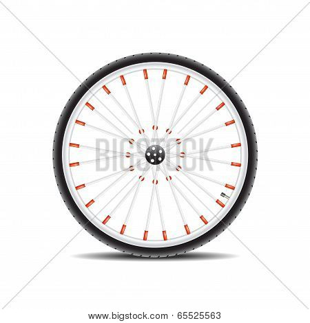 Bicycle wheel and shadow