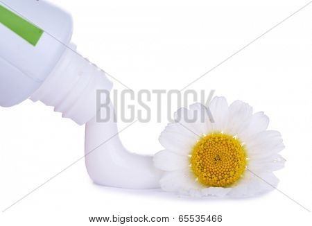 Toothpaste squeezed from tube, chamomile flower, close-up, isolated on white