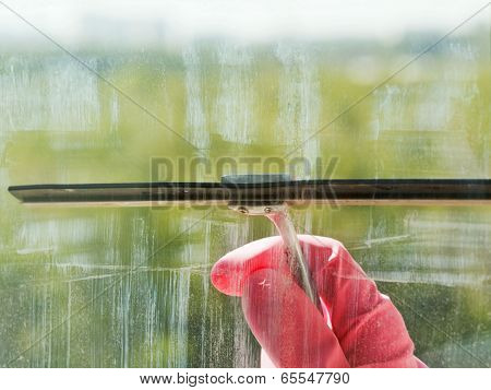 Hand In Pink Glove Washes Window Glass By Squeegee