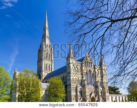 Salisbury Cathedral Wiltshire England Uk