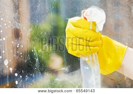 Hand Washes Home Window From Spray Bottle