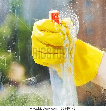 Washing Window From Spray Bottle