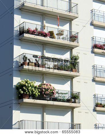 Flowers at balconies