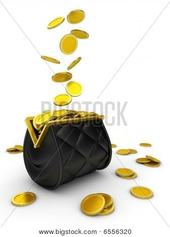 Purse and falling money