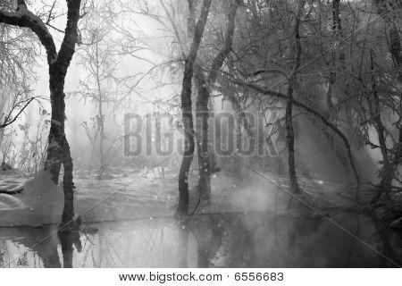 Monochrome Winter Landscape