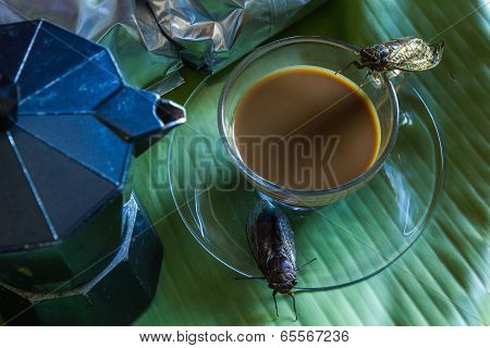 Percolator  And Coffee With Cicada