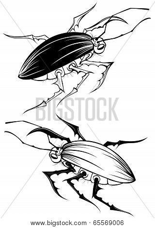 Two Stylized Beetle