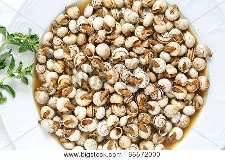 top view of cooked snails (escargot) - traditional portuguese snack