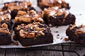 stock photo of chocolate fudge  - Brownies with peanut butter and chocolate drops - JPG