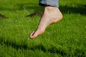 stock photo of wet feet  - Dewy water drops on wet barefoot foot after walking in morning meadow grass - JPG