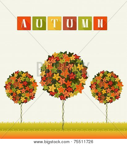 Autumn Colors Trees Abstract Garden