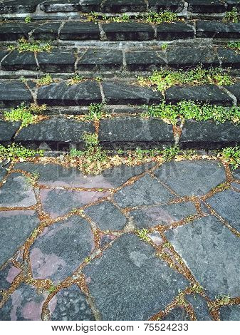 Old Mossy Stone Steps